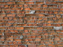 Old bricks wall Royalty Free Stock Images