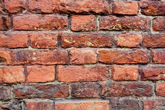 Old bricks wall fragment background. Royalty Free Stock Images