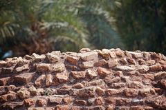 Old bricks wall with green background photo. Beautiful red old bricks wall with green natural background photo royalty free stock photography