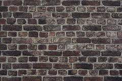 Old brickwall Stock Images