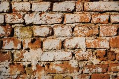 Old brickwall Royalty Free Stock Photo