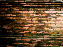 Old brickwall texture Royalty Free Stock Photography