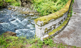 Concrete Bridge with Moss Stock Images