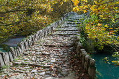 Old bridge in Greece. Traditional stone bridge in Epirus, Greece Royalty Free Stock Photos