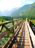 Old bridge on the lake Royalty Free Stock Image