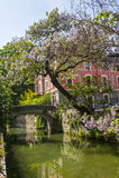 Old bridge on the Martesana canal (Milan) Royalty Free Stock Image