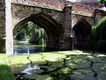 Old bridge over moat with waterplants. Old Tudor bridge over moat with waterplants and greenery stock photos