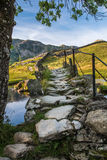 Old bridge over River Brathy, Little Langdale Stock Photos