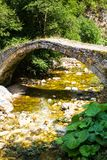 Old bridge over the river in the Rhodopes, Bulgaria Royalty Free Stock Photo