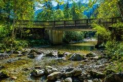 Old Bridge over Sunlit Mountain Creek in Austria Royalty Free Stock Photography