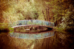 Old bridge in the park with lake Royalty Free Stock Photos