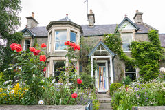 Old, British house. With window and climbing roses Royalty Free Stock Photography