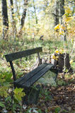 Old broken bench in the autumn park. Vertically Royalty Free Stock Photos