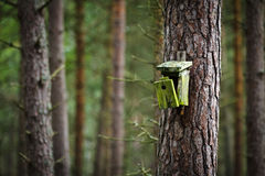 Old broken birdhouse in forest stock photos