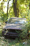 Old, broken car between green bushes Stock Images