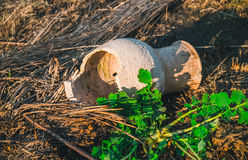 Old broken clay jug. The effects of natural disasters and the hope of new life. Fresh young greens sprout amid the broken dishes and scorched earth. The Stock Photo