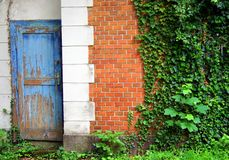 Old broken door - new house. Detail of the house, texture wall, window and old broken door on a background of beautiful green tall wall in new house Royalty Free Stock Images