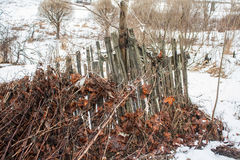 Old broken fence with an old foliage Royalty Free Stock Image