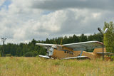 Old broken plane in a field Royalty Free Stock Image