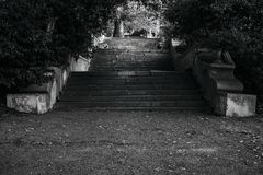 Old broken stair and trees, location, bw. Old stone broken staircase and trees in the park, location, bw Royalty Free Stock Images