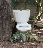 Old broken toilet. Stands in the woods near a tree Royalty Free Stock Photography