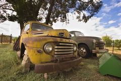Old broken vintage cars under tree royalty free stock photography