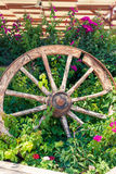 Old broken wagon wheel Stock Images