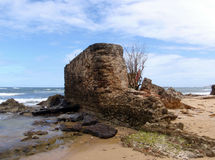 Old Broken wall on the beach Stock Photos