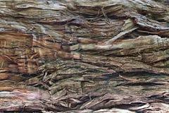 Old broken wood fiber close-up Stock Photo