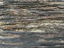 Old broken wood plank texture. Close up old broken wood plank texture Stock Photo