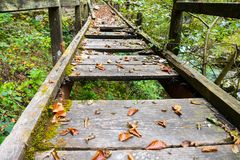 Old broken wooden bridge with holes dangerous walking path stock image