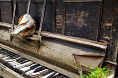 Black and white keys of a wooden broken keyboard piano. old open worn book on the piano. stock image