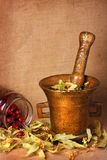 Old bronze mortar with herbs and rose hips royalty free stock photo