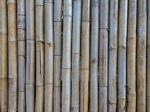 Old brown bamboo for make fence, hut or wall home. royalty free stock image