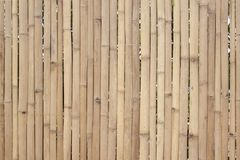 Old brown bamboo for make fence, hut or wall home. royalty free stock photos
