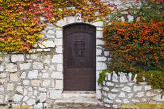 Old Brown Door. A photo of an old door with colorful vines growing around it Stock Image