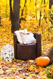 Old  brown garden chair in autumn leaves Royalty Free Stock Images