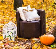 Old  brown garden chair in autumn leaves Stock Photography