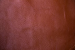 Old brown genuine leather background texture Stock Image