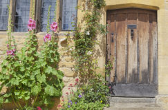Old brown house doors, colorful flowers in front Stock Photos