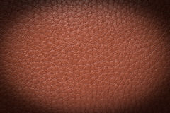 Old brown leather background. texture Royalty Free Stock Image