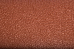 Old brown leather background. texture Stock Images