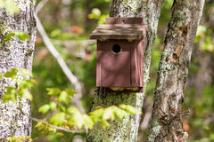 Old brown painted bird house Royalty Free Stock Photo