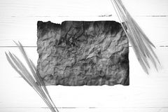 Old brown paper and wheat black and white color Royalty Free Stock Photo
