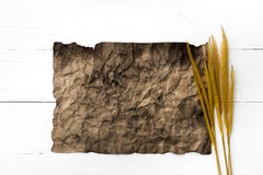 Old brown paper and wheat Royalty Free Stock Images