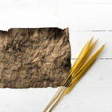 Old brown paper and wheat Royalty Free Stock Photography