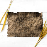 Old brown paper and wheat Stock Image