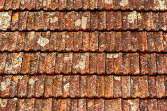Old brown shingles on the roof Royalty Free Stock Image