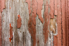 Old brown texture wood 2. Old brown texture wood detail macro royalty free stock images