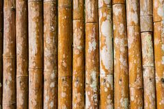 Old brown tone bamboo plank fence texture for background.  royalty free stock photo